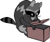 Gerald_G_Raccoon_opening_box_1